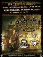 Concierto el viernes 9 de Noviembre en Granada
